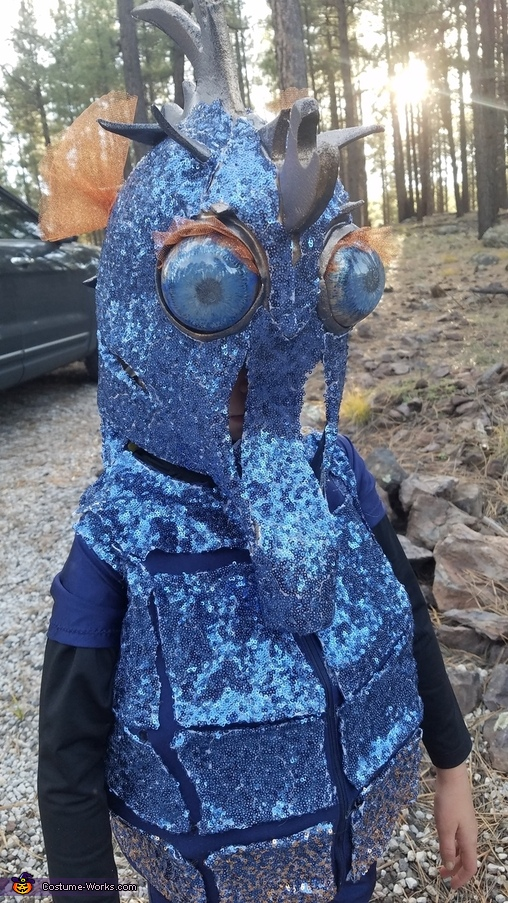 From the front, Seahorse Costume