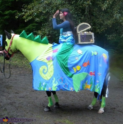 Seahorse and Mermaid Costume