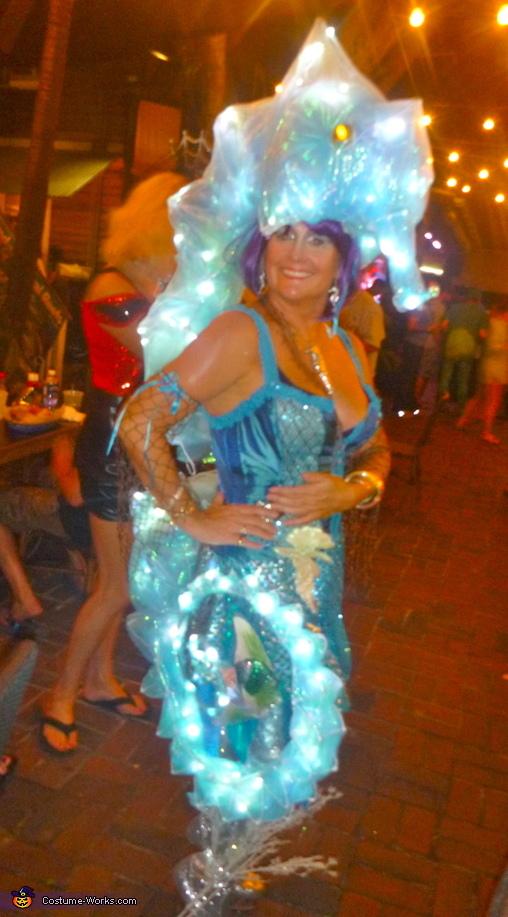 Seahorse siren seahorse siren costume