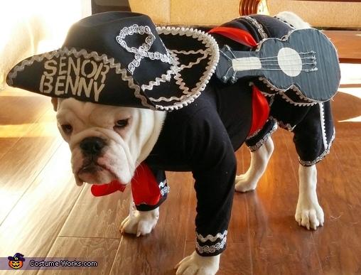 Senor Benny the Mariachi Costume