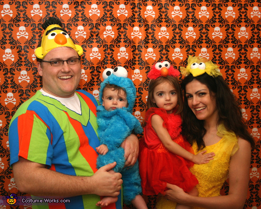 Sesame Street Family - Homemade costumes for families