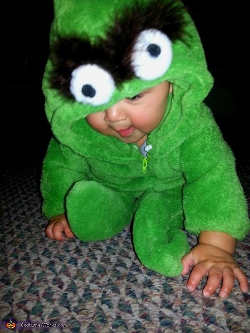 Oscar the Grouch, Sesame Street Family Costume