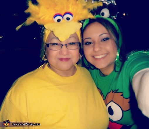 Homemade Headbands for Big Bird and Oscar the Grouch!, Sesame Street Family Costumes
