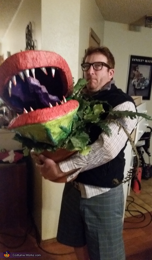 Seymour and Audrey 2 Costume