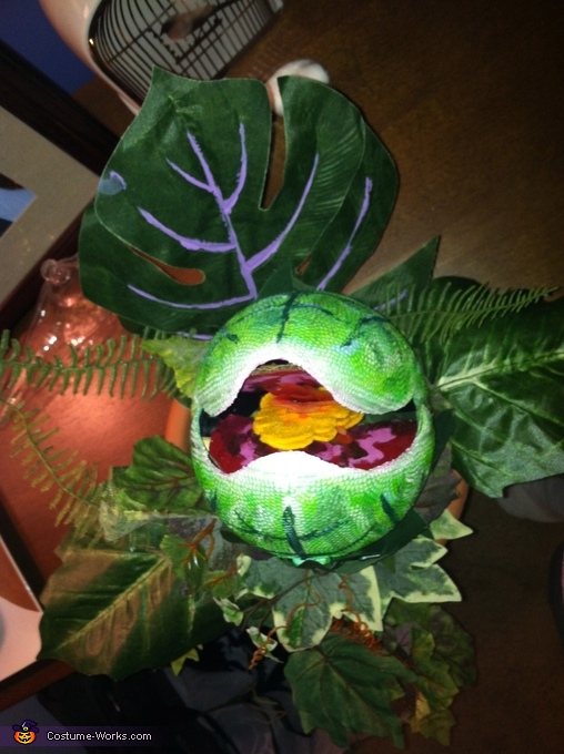 Audry II, made form a football, Seymour and Audrey II Costume