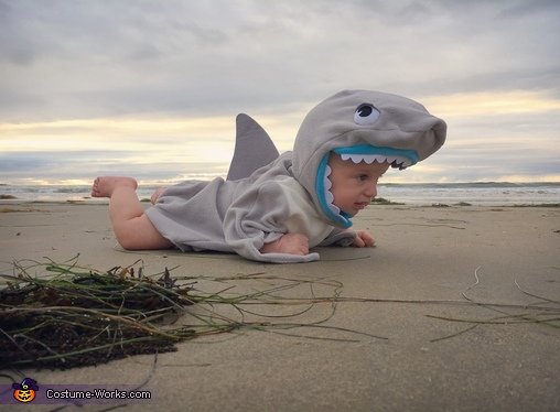 Shark Out of Water, Shark Attack Costume