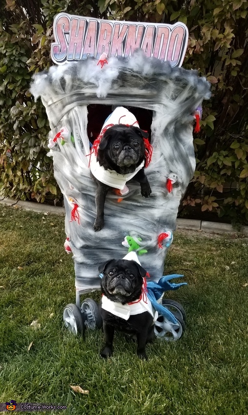 Sharknado - Pugnado Costume
