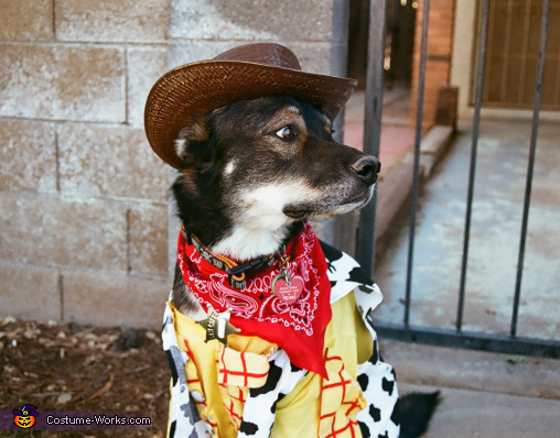 Woody the Sheriff Costume for Dogs