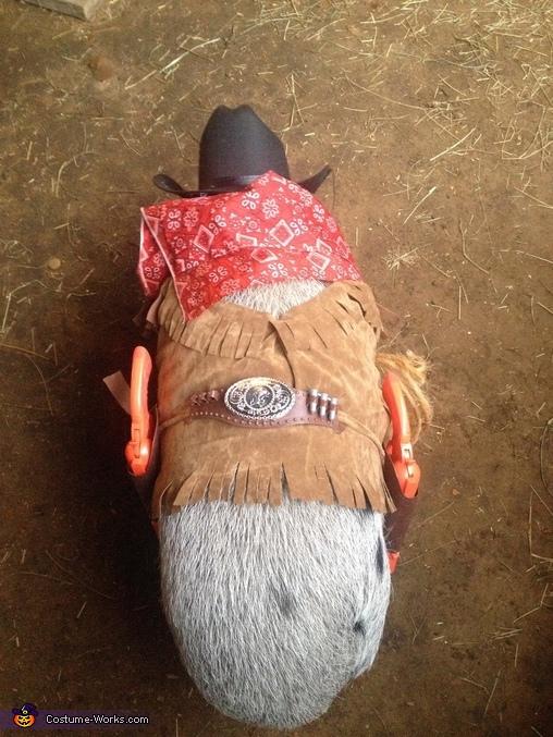 Sheriff Pig Costume