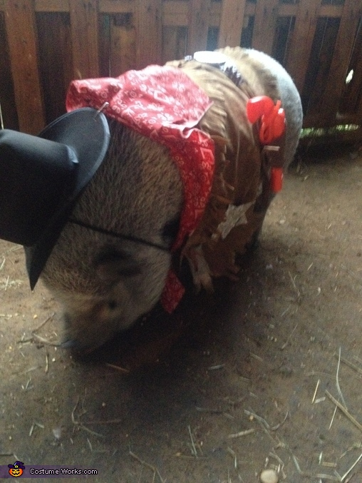 Sheriff Pig Costume