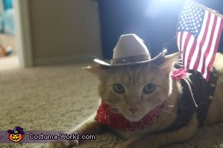 Sheriff Cat Homemade Costume