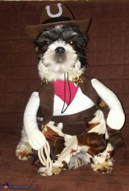 The Sheriff Costume