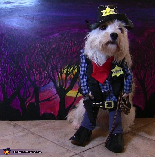 Sheriff Puppy Costume