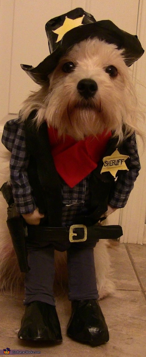 Sheriff Puppy Homemade Costume