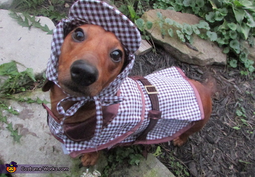 Sherlock Hounds Costume