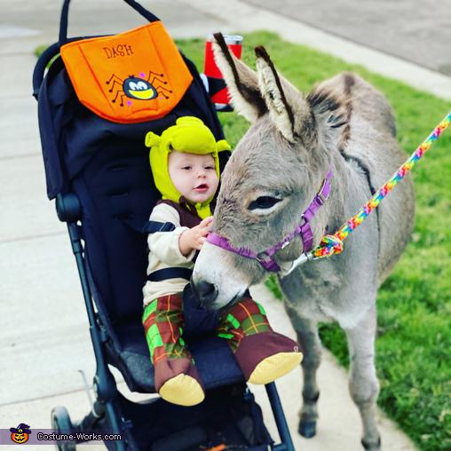 Shrek and Donkey Costume