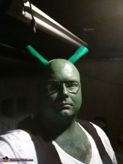 shrek , Shrek and Fiona Costume