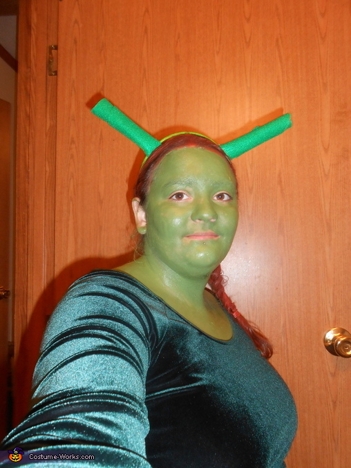 fiona , Shrek and Fiona Costume