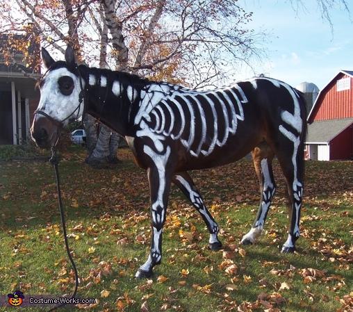 Skeleton Horse Costume