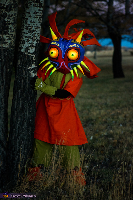 Skull Kid from The Legend of Zelda Majora's Mask Homemade Costume
