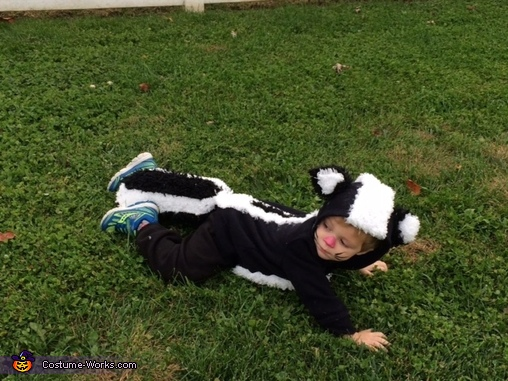 Skunk Homemade Costume