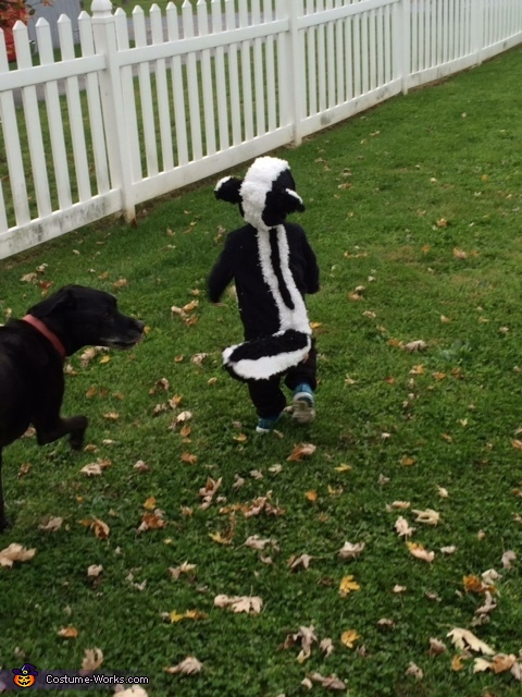 Skunk Homemade Costume