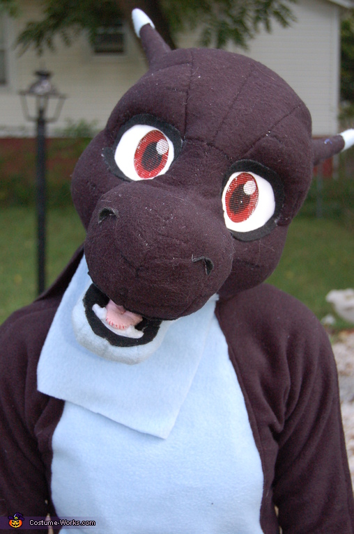 Skye the Dragon Homemade Costume