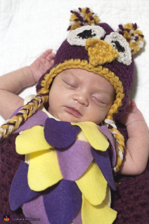 Sleepy Owl Baby Costume