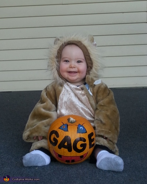 Smiley Lion Costume