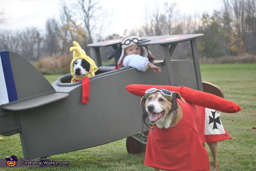Snoopy & Woodstock vs. The Red Baron Costume
