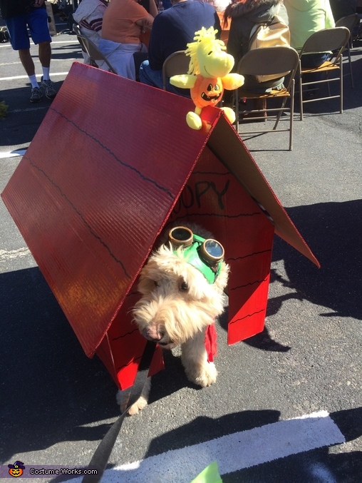 Snoopy The Flying Ace Dog Homemade Costume