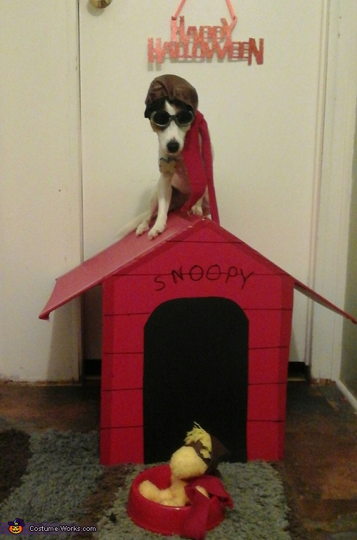 """Snoopy """"The Flying Ace"""" Costume"""