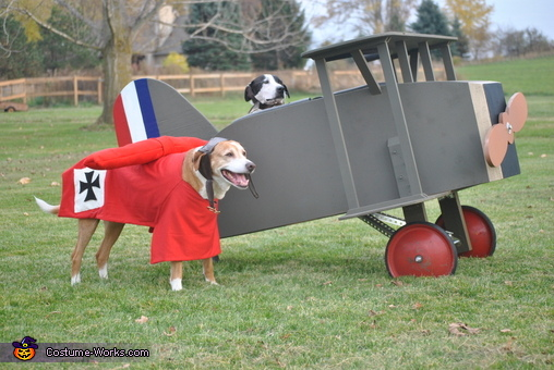 Snoopy vs. The Red Baron Costume