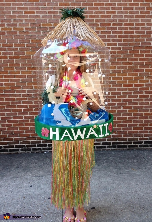 Snow Globes - New Orleans and Hawaii Costumes