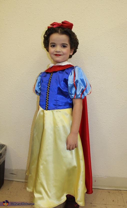 Snow White Costume  sc 1 st  Costume Works & Snow White Halloween Costume
