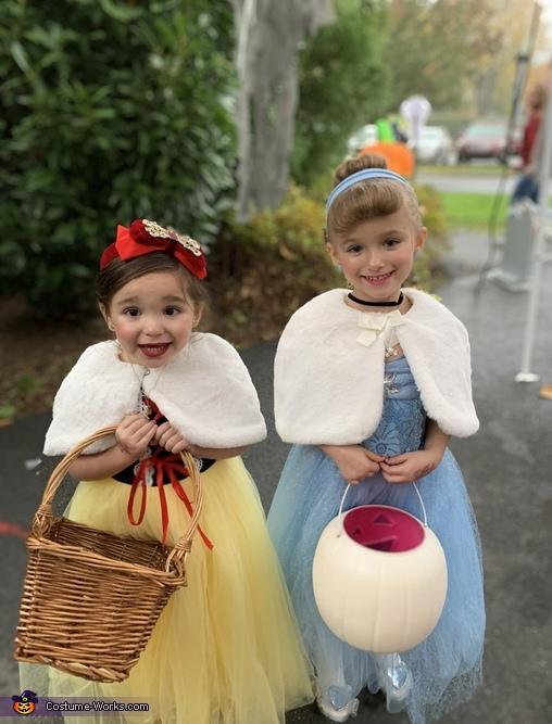 Snow White and Cinderella Costume