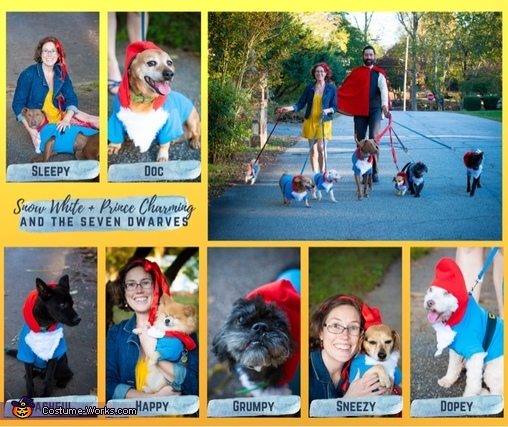 Snow White and her crew, Snow White, Her Prince and the 7 Dwarfs Costume