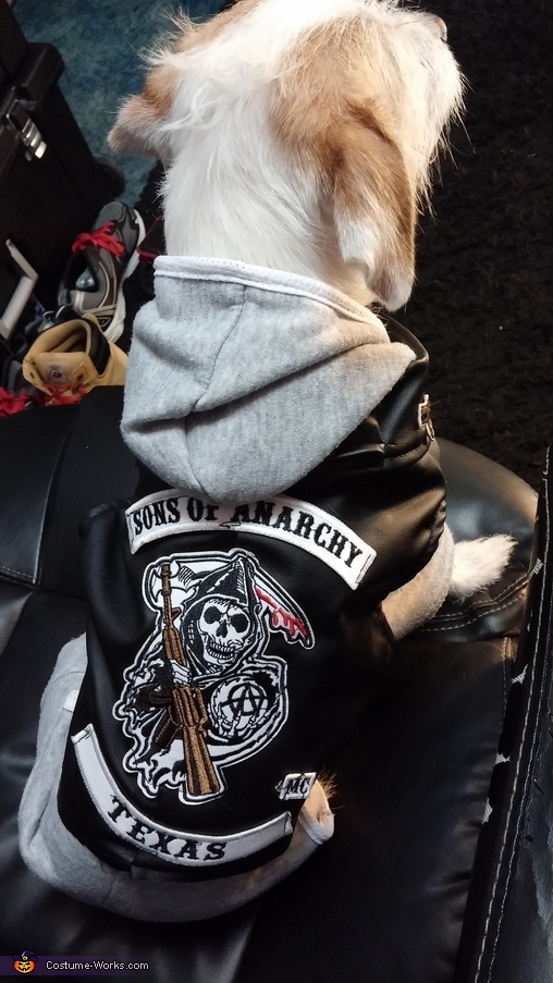 Back View, SOA Jax Dog Costume