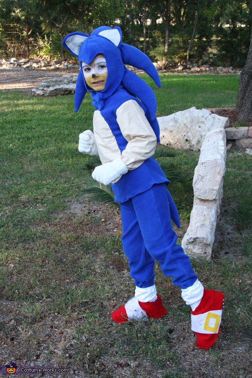 Sonic in action, Sonic the Hedgehog Costume