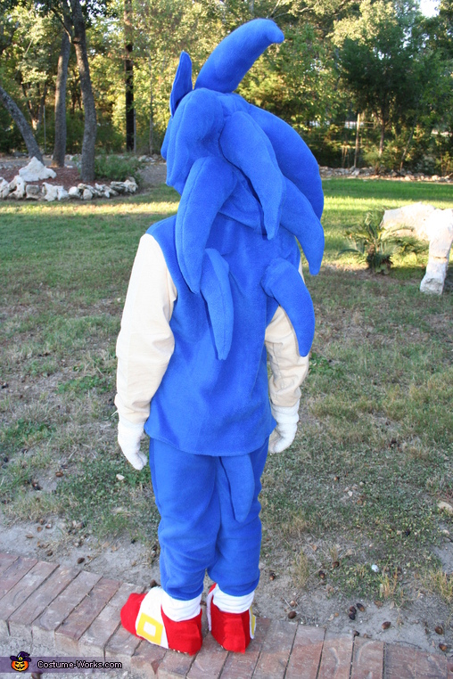 Back view of Sonic, Sonic the Hedgehog Costume