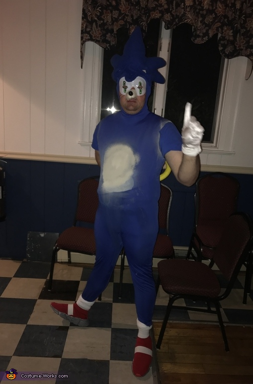 Sonic The Hedgehog Costume Creative Diy Costumes