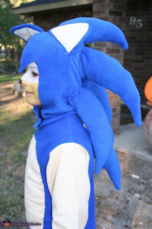 Close view of Sonic, Sonic the Hedgehog Costume