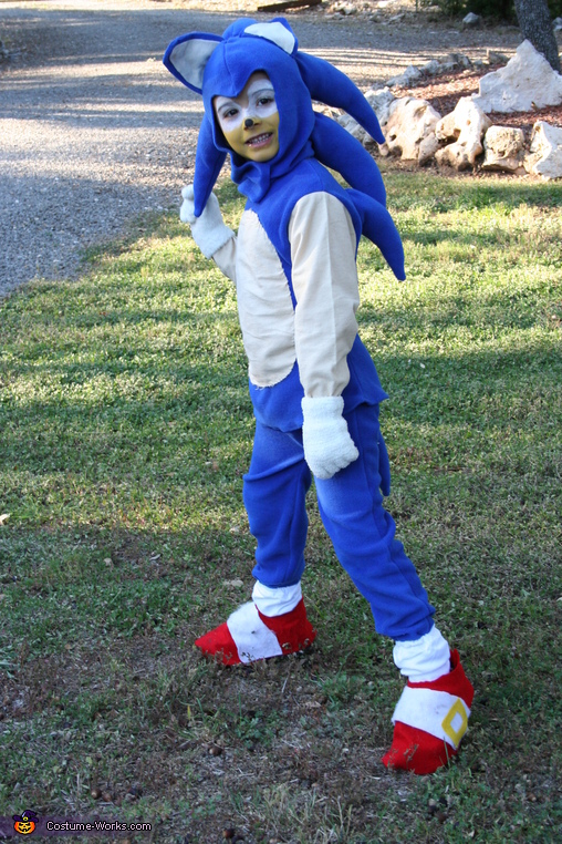 Sonic The Hedgehog Costume Photo 5 5