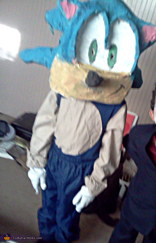 Homemade Sonic The Hedgehog Costume Photo 2 2