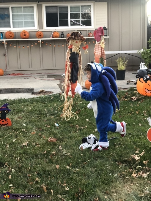 Sonic the Hedgehog and Tails Homemade Costume