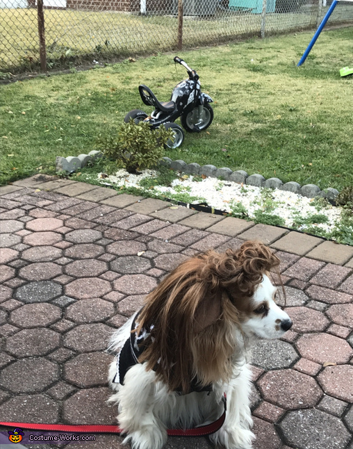 Our beautiful Tara (SOA) - pup version, Sons of Anarchy Costume