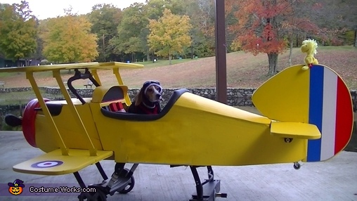 Taxi on the runway with a friend, Sopwith Pup Costume