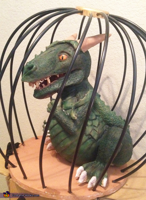 Sorceress Gazelda with Pet Dragon Homemade Costume