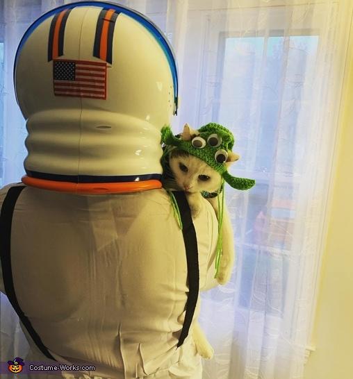 Space Cat Homemade Costume