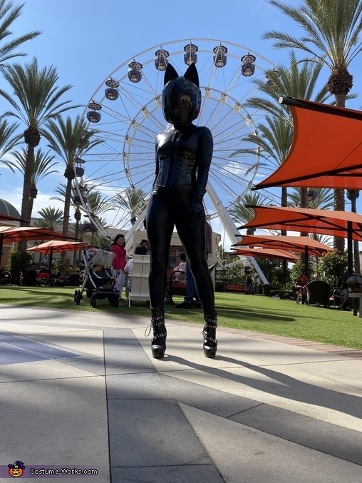 Integration, Space Kitten Costume